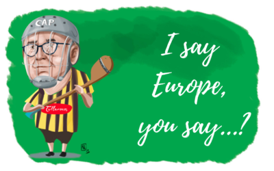 I say Europe, you say…? Interview with Phil Hogan